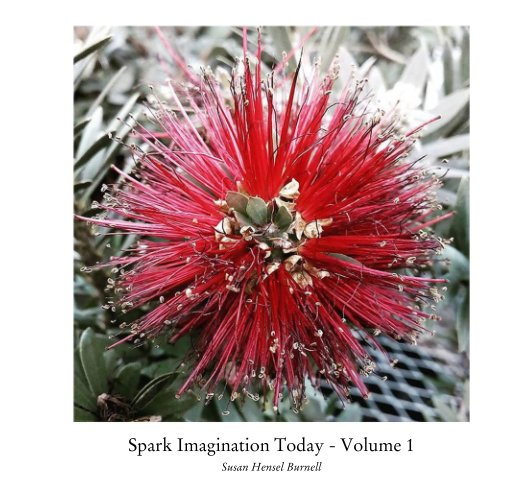 View Spark Imagination Today - Volume 1 by Susan Hensel Burnell