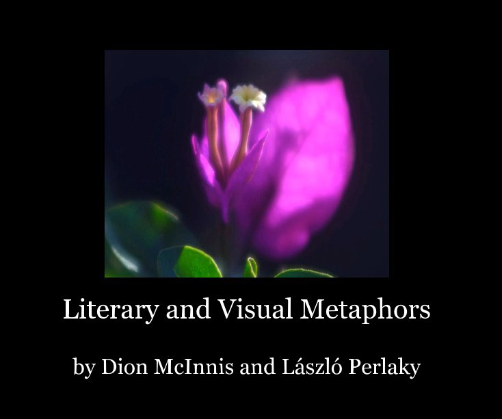 View Literary and Visual Metaphors by Dion McInnis, László Perlaky