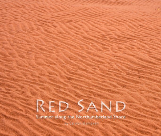 View Red Sand by Carolyn Stampeen