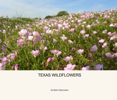 TEXAS WILDFLOWERS - Arts & Photography Books photo book