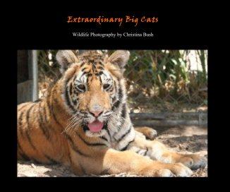 Extraordinary Big Cats - Arts & Photography Books photo book