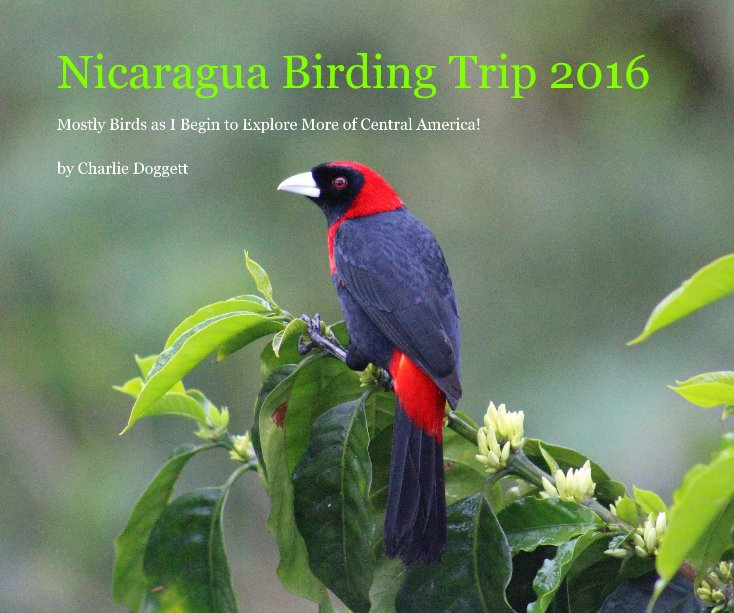 View Nicaragua Birding Trip 2016 by Charlie Doggett