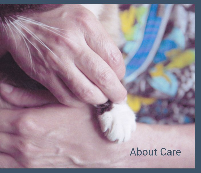 View About Care by Daura Alexe