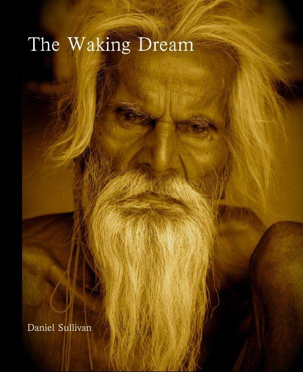 View The Waking Dream by Daniel Sullivan