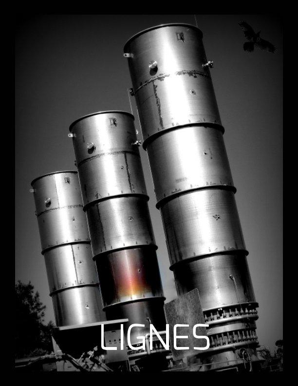 View Lignes by Agnes Durbet, Jean Giono