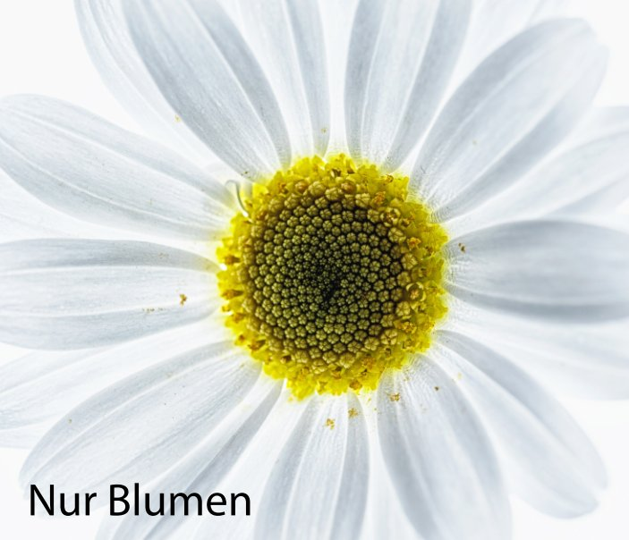 Nur Blumen nach Roland Weber anzeigen