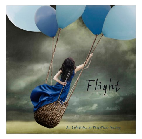 View Flight, Softcover by PhotoPlace Gallery
