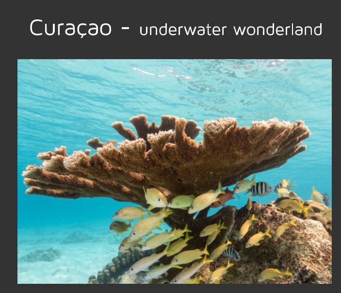 Curaçao - underwater wonderland nach naturepics - Yvonne Kühnast, Tilo Kühnast anzeigen