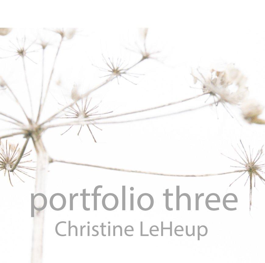 View Portfolio three by Christine LeHeup