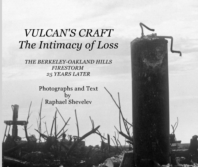 View Vulcan's Craft: The Intimacy of Loss by Raphael Shevelev