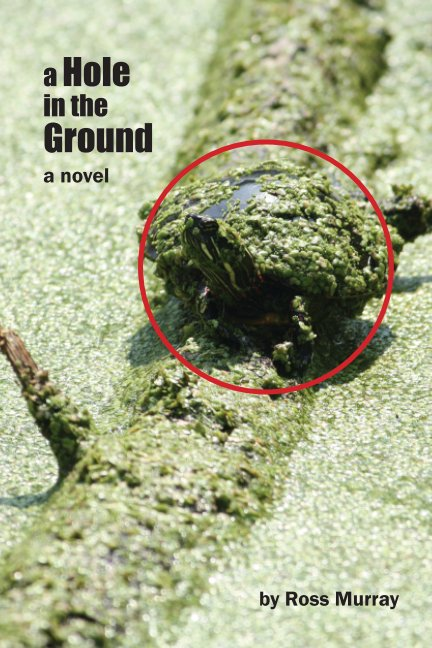 View A Hole in the Ground by Ross Murray