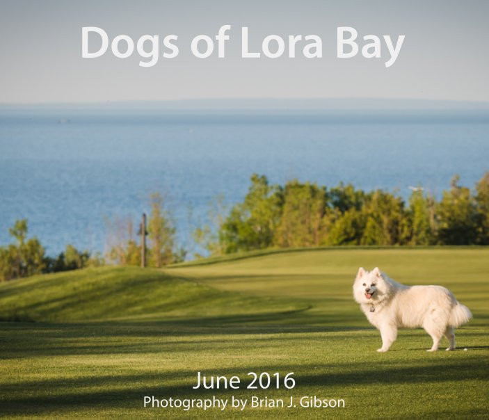 View Dogs of Lora Bay by Brian J. Gibson