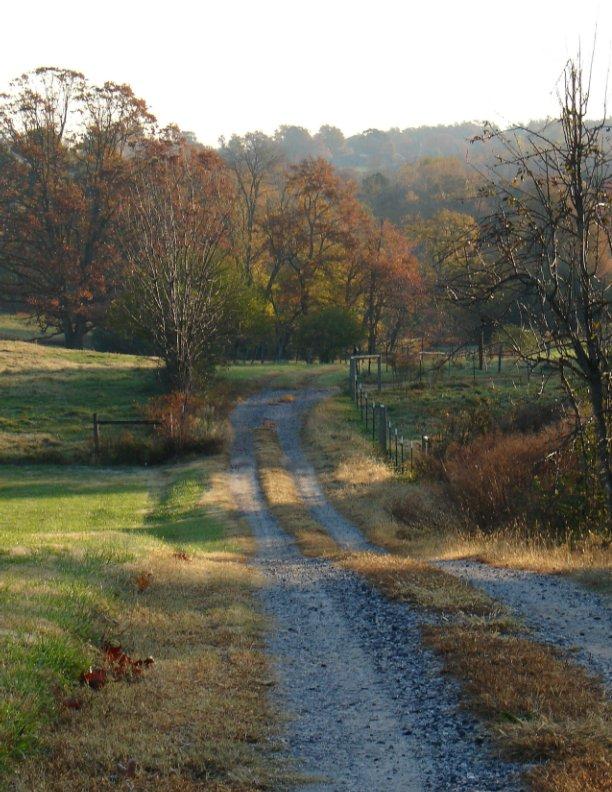 View Paths by Sandra Lynn Sparks