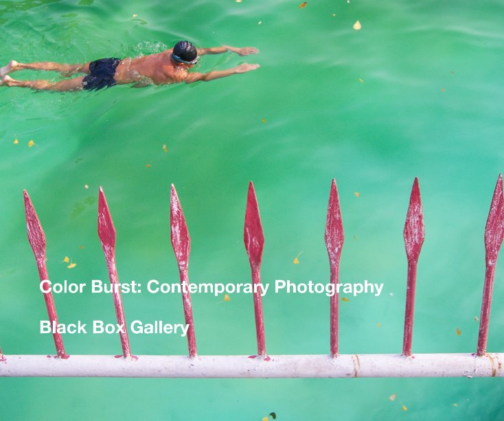 View Color Burst: Contemporary Photography by Black Box Gallery