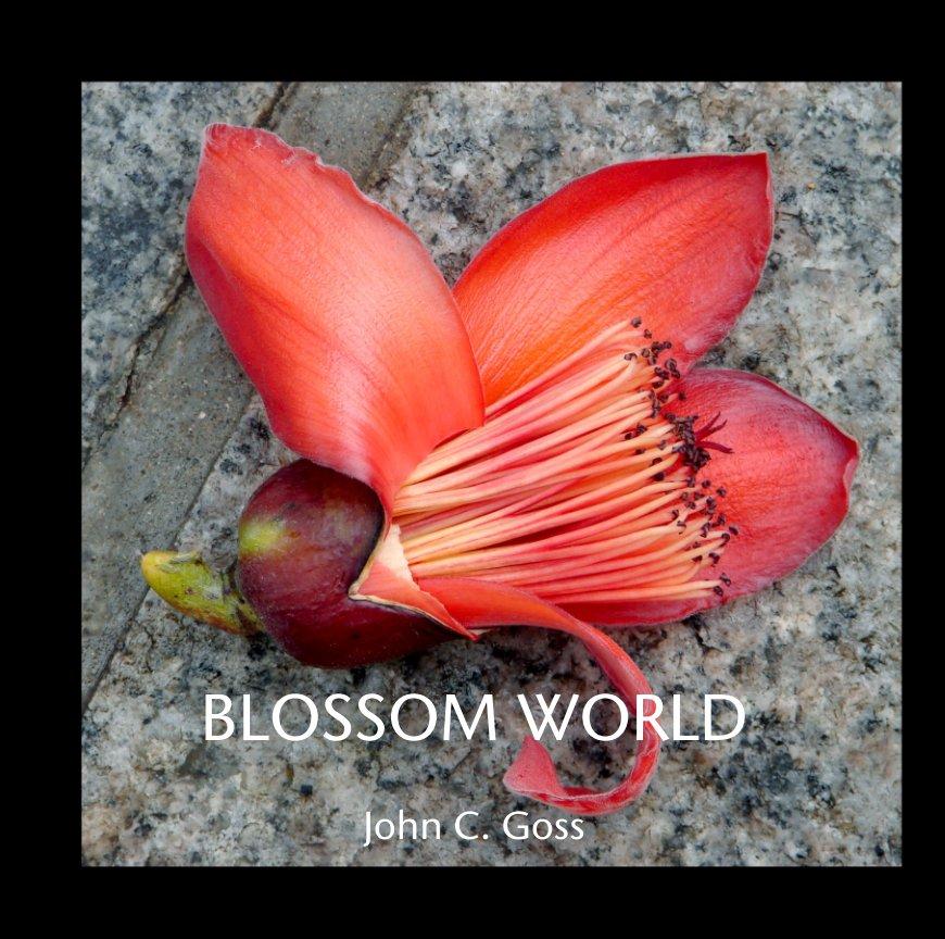 View BLOSSOM WORLD by John C. Goss