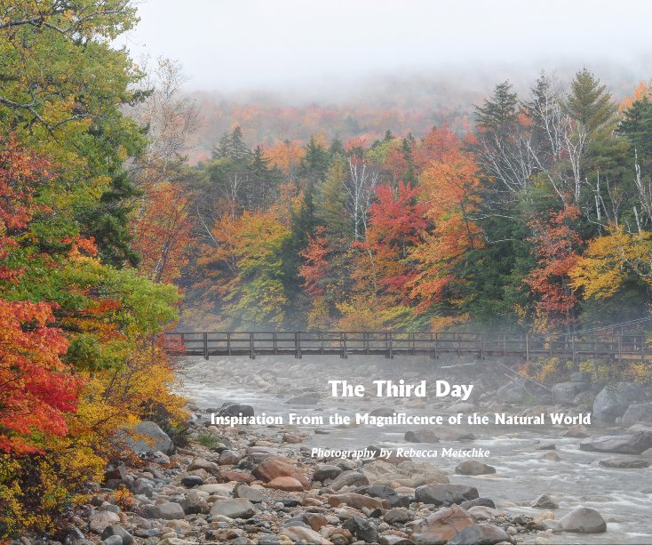 View The Third Day by Photography by Rebecca Metschke
