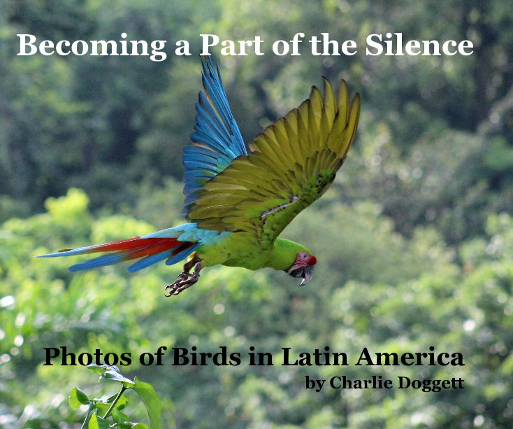 View Becoming a Part of the Silence by Charlie Doggett