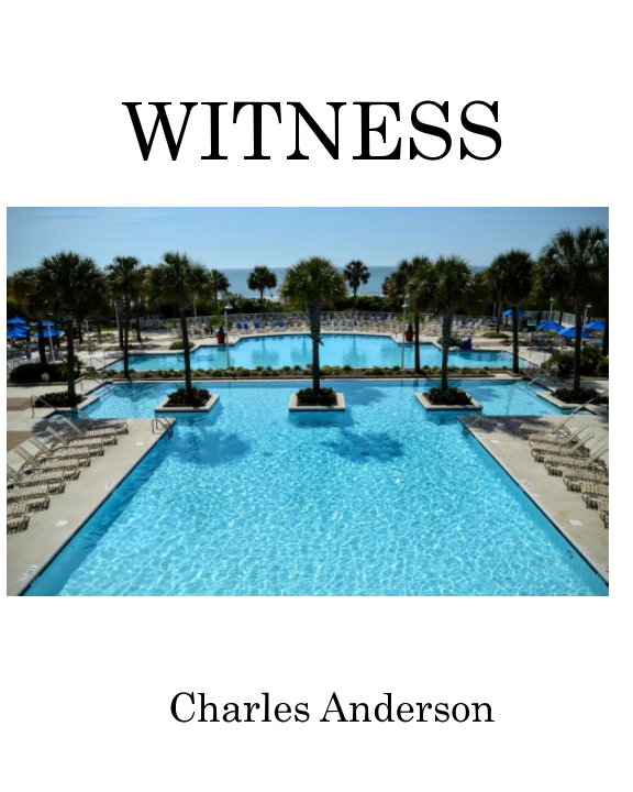 View Witness by Charles Anderson