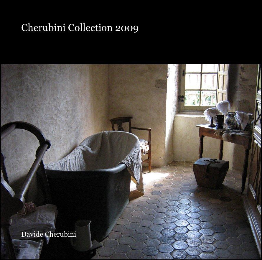 View Cherubini Collection 2009 by Davide Cherubini