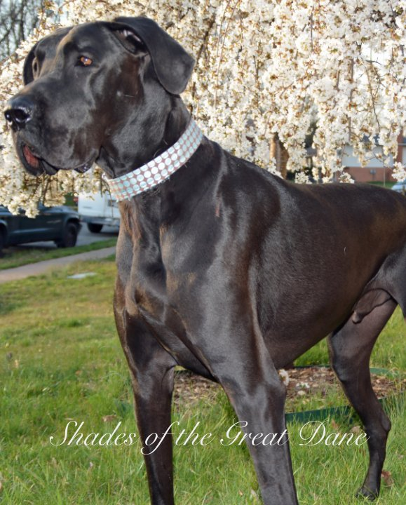 View Shades of the Great Dane by Mid-Atlantic Great Dane Rescue, Inc