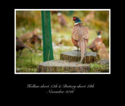 Hollam shoot 17th & Buttery shoot 18th November 2016 - Arts & Photography Books photo book