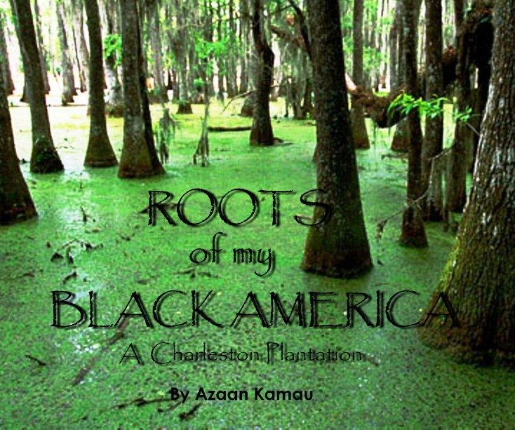View Roots of My Black America by Azaan Kamau