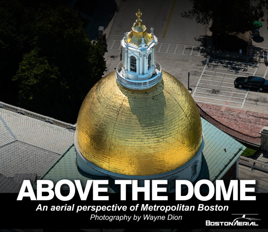 View Above the Dome by Wayne Dion