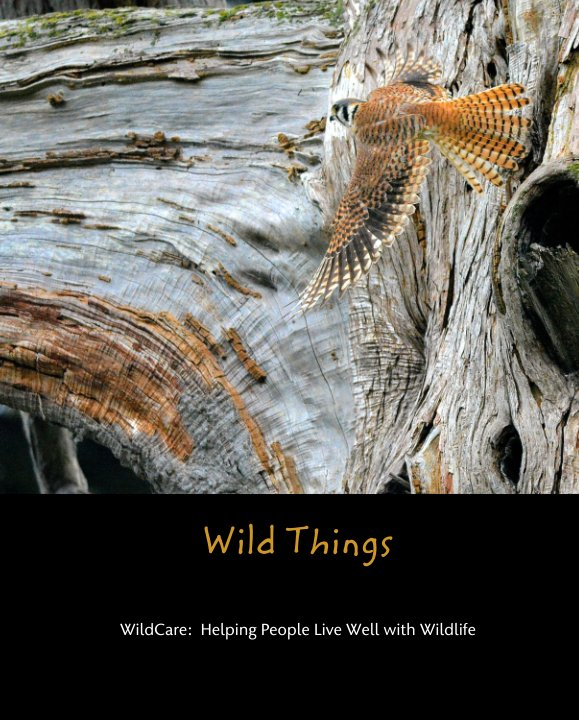 View Wild Things by WildCare:  Helping People Live Well with Wildlife