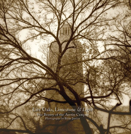View Live Oaks, Limestone & Light (7x7HC) by Blake Justice