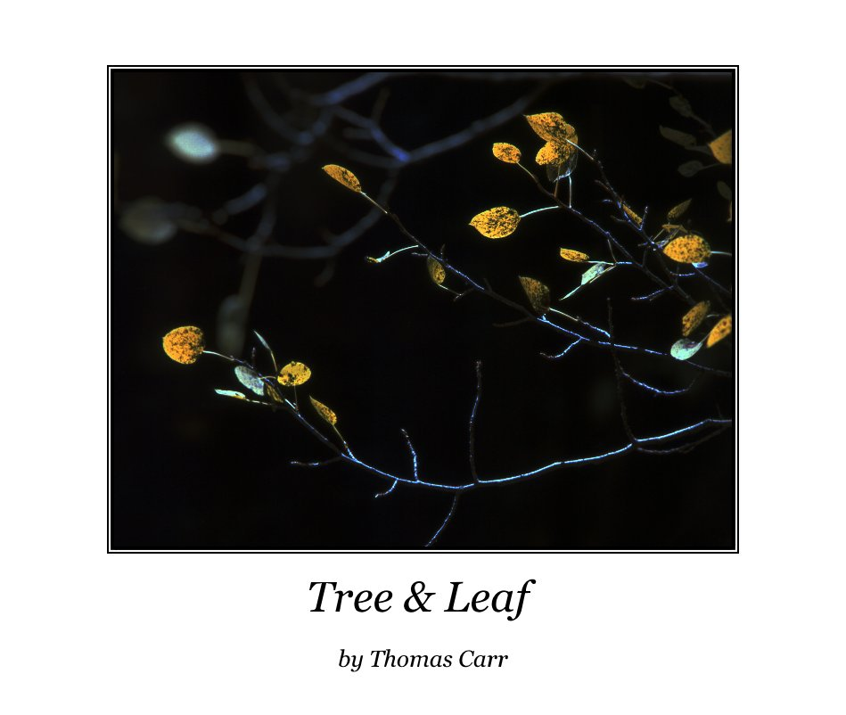 View Tree & Leaf by Thomas Carr