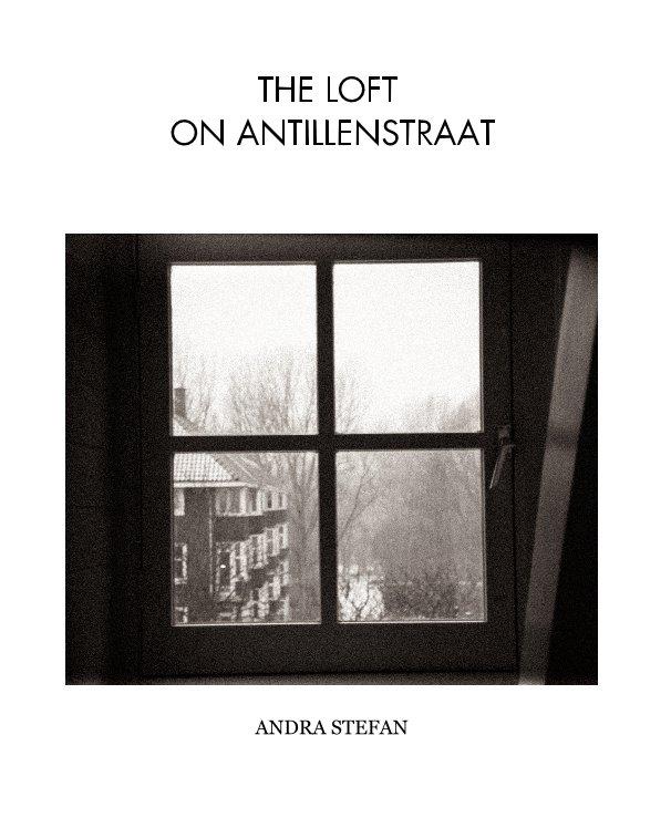 View The Loft on Antillenstraat by Andra Stefan