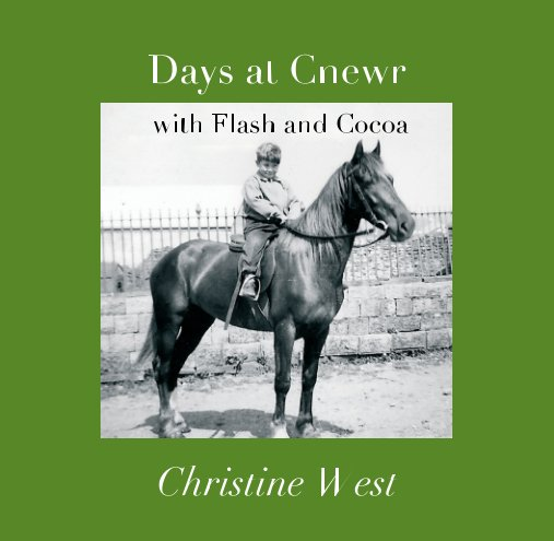 View Days at Cnewr by Christine West