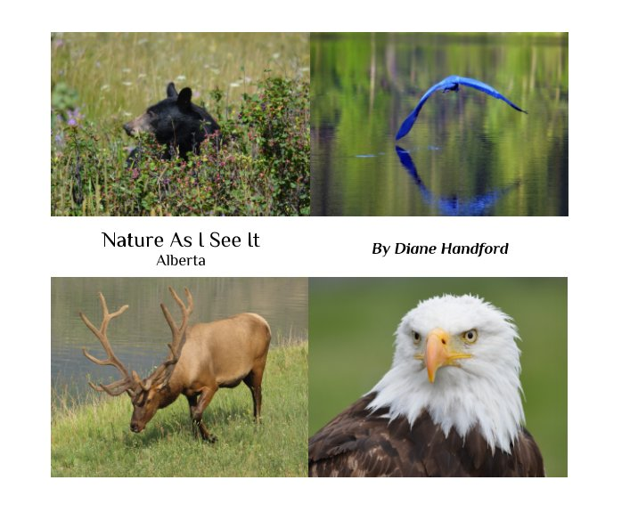 View Nature As I See It by Diane Handford