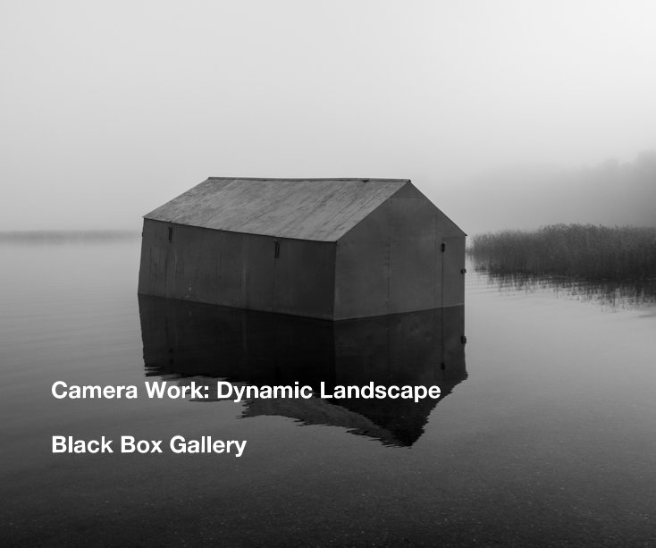 View Camera Work: Dynamic Landscape by Black Box Gallery
