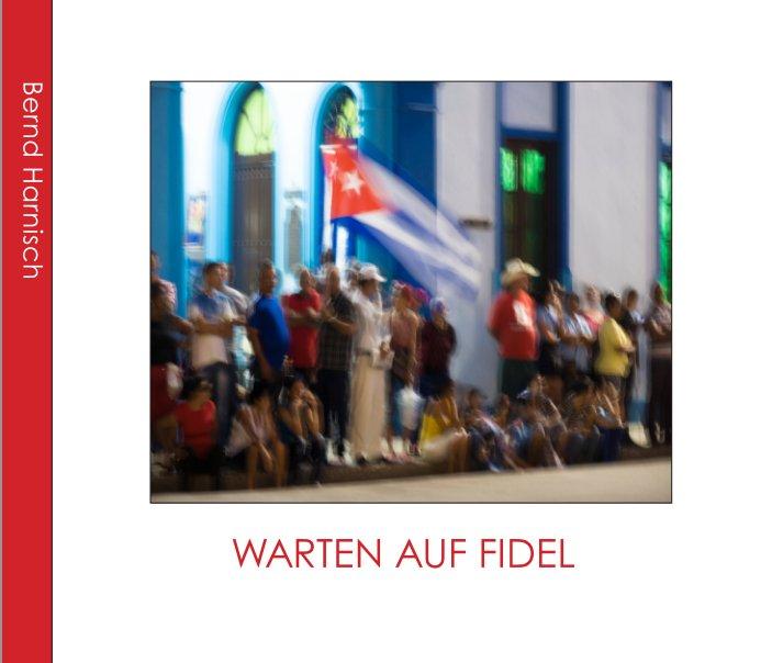 View Warten auf Fidel - Waiting for Fidel by Bernd Harnisch