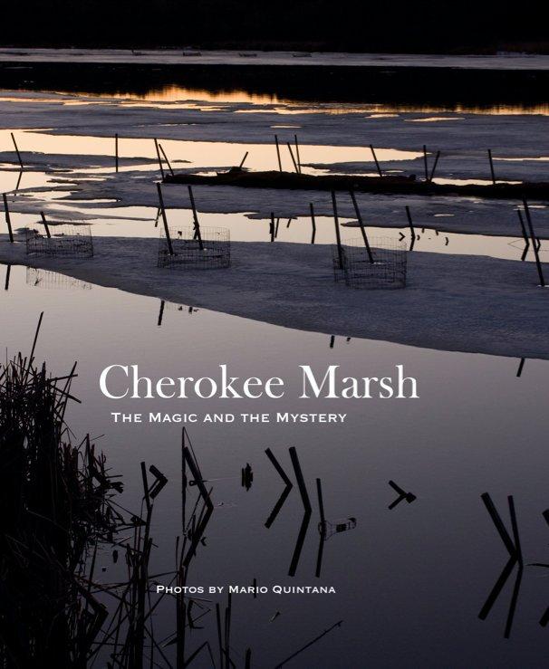 View Cherokee Marsh by Mario Quintana