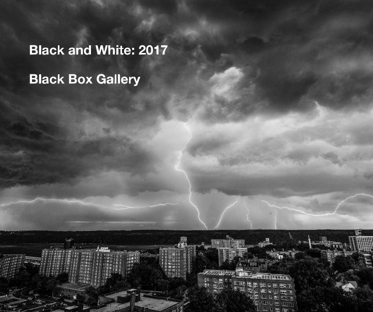 View Black and White: 2017 by Black Box Gallery
