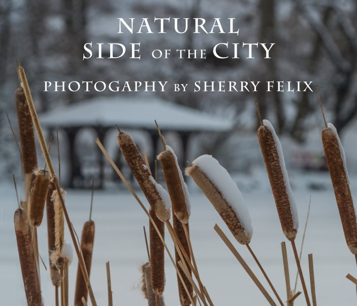 View Natural Side of the City [hard cover] by Sherry Felix