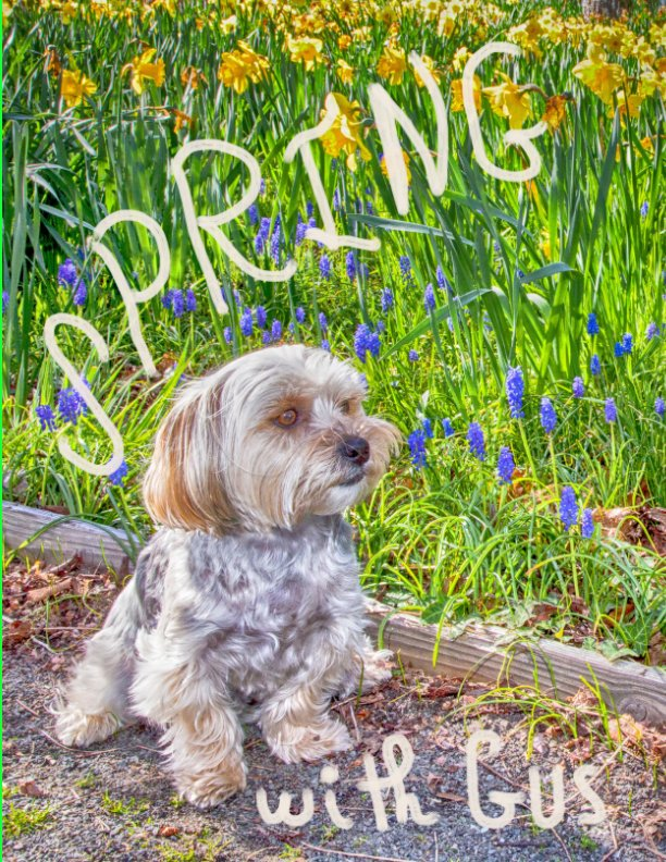 View SPRING with Gus by Anne Marie Leone