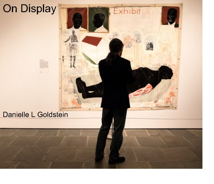View On Display by Danielle L Goldstein
