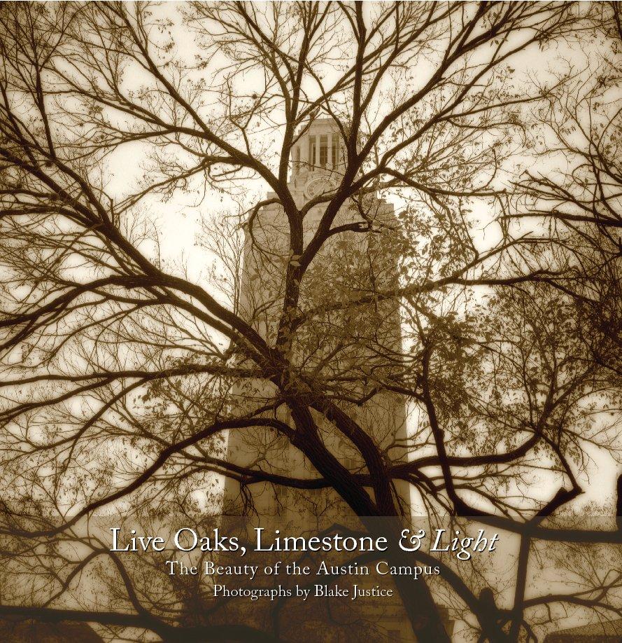 View Live Oaks, Limestone & Light (12x12HC) by Blake Justice