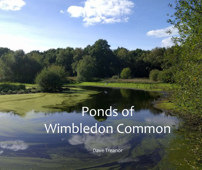 View Ponds of Wimbledon Common by Dave Treanor