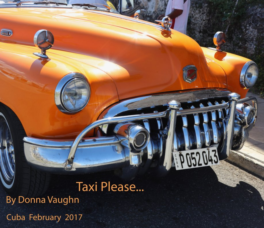 View Taxi Please by Donna Vaughn