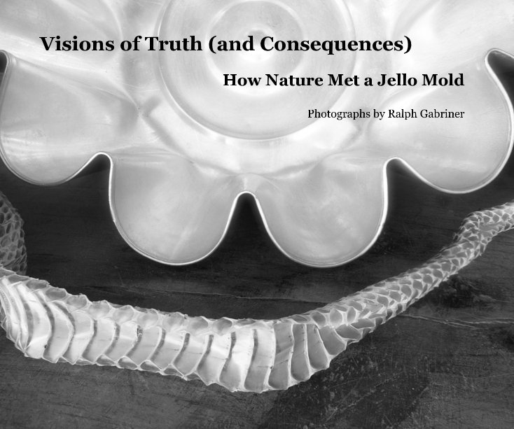 Ver Visions of Truth (and Consequences) por Ralph Gabriner