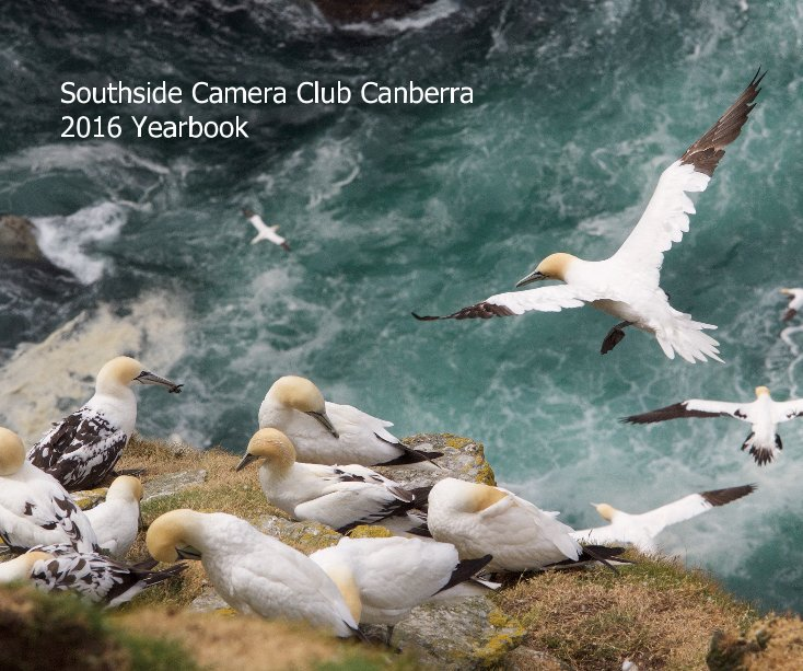 View Southside Camera Club Canberra 2016 Yearbook by Rod Burgess (editor)