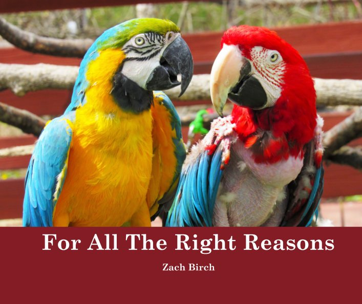 View For All The Right Reasons by Zach Birch