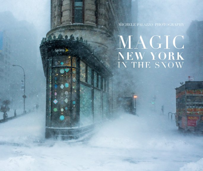 View MAGIC NEW YORK IN THE SNOW by Michele Palazzo