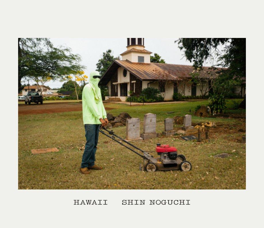 View HAWAII by SHIN NOGUCHI