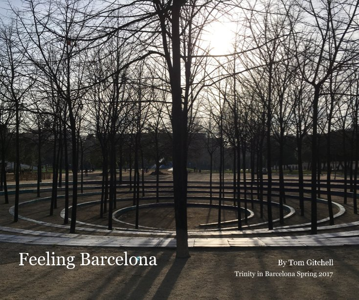 View Feeling Barcelona by Tom Gitchell