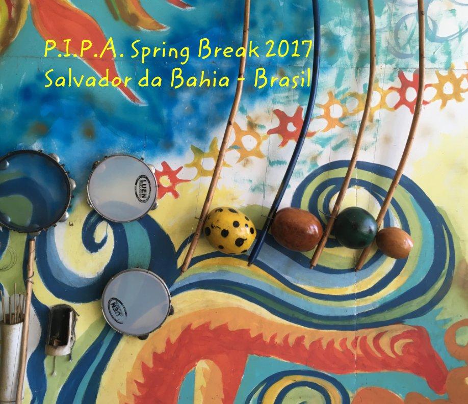 View P.I.P.A. 2017 Spring Break Trip to Salvador da Bahia - Brasil by Ricardo Cookson